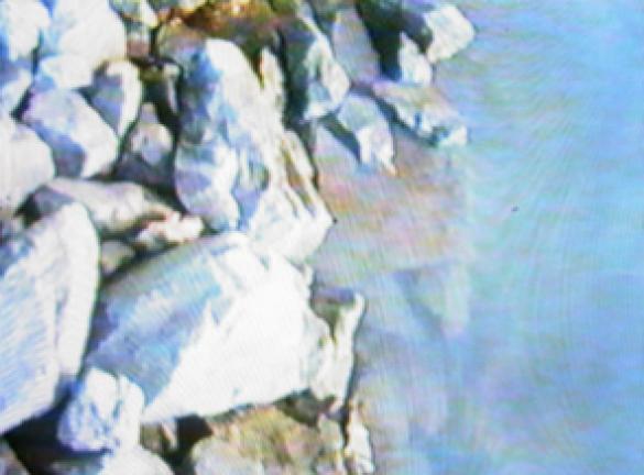 a domk.jpg